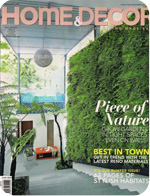 Homeanddecor_June09_cover