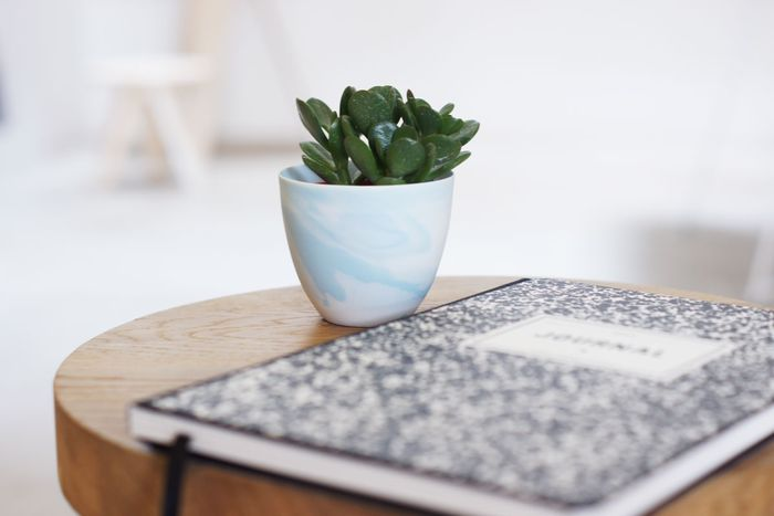 Bloesem living | 25 picks for Green thumbs - Bloesem Holiday gift guide