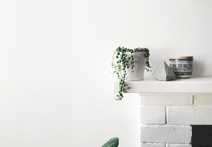 Bloesem Living | Instagram love - Bec Tougas
